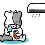 ダイエット62日目 夏は痩せやすい?それとも太る?